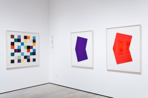 ellsworth-kelly-los-angeles-2-16-12-3